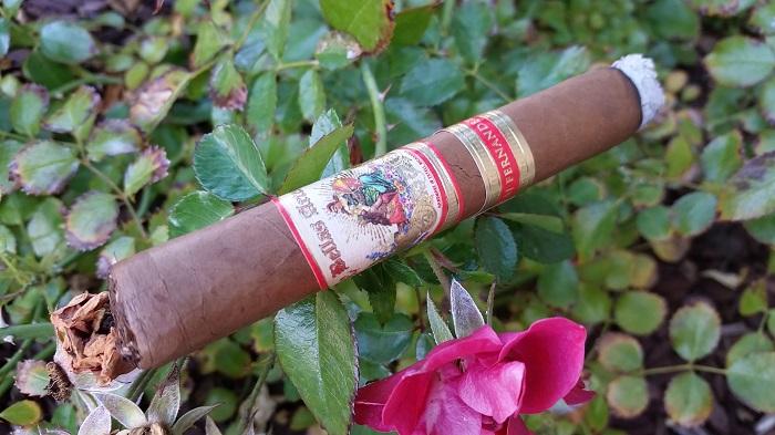 Team Cigar Review: AJ Fernandez Bellas Artes Short Churchill