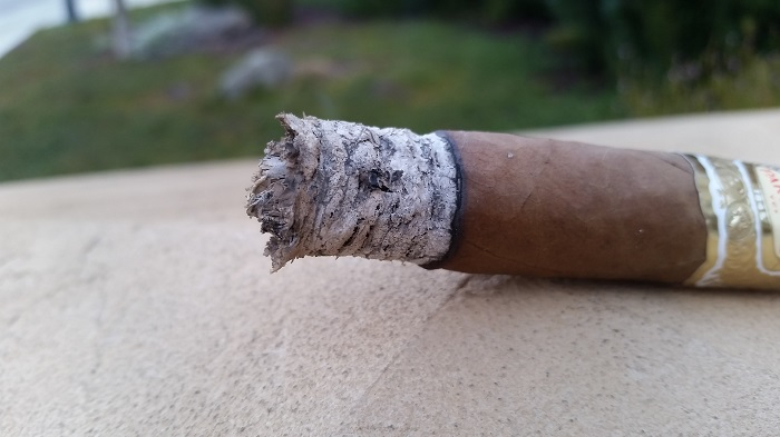 Team Cigar Review: Partagas Ramon y Ramon Robusto