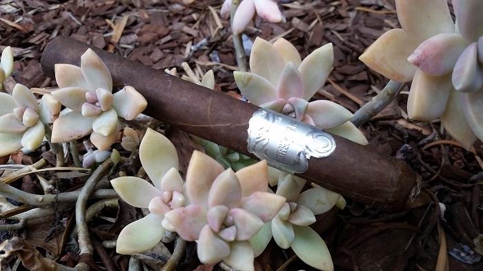 Team Cigar Review: Cordoba & Morales Platino Sumatra: Reposado en Cedro Toro