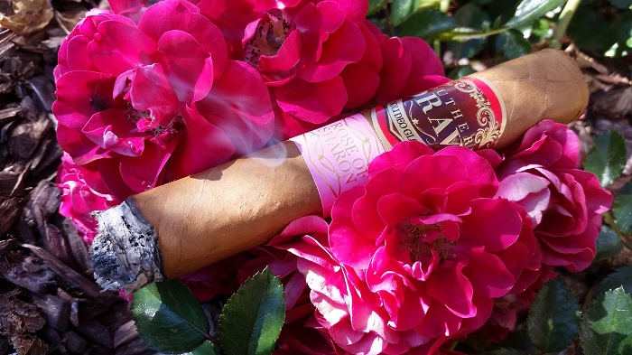 Team Cigar Review: Southern Draw Rose of Sharon Toro