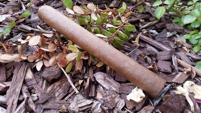 Team Cigar Review: Warped Lirio Rojo