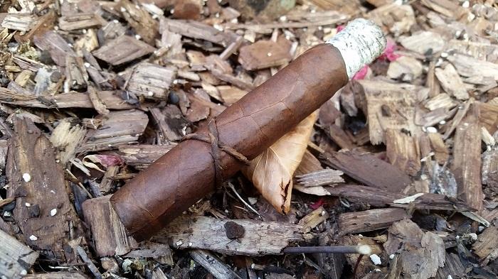Team Cigar Review: CAO Fuma Em Corda Robusto