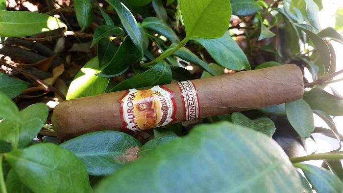 Team Cigar Review: La Aurora 1987 Connecticut Robusto