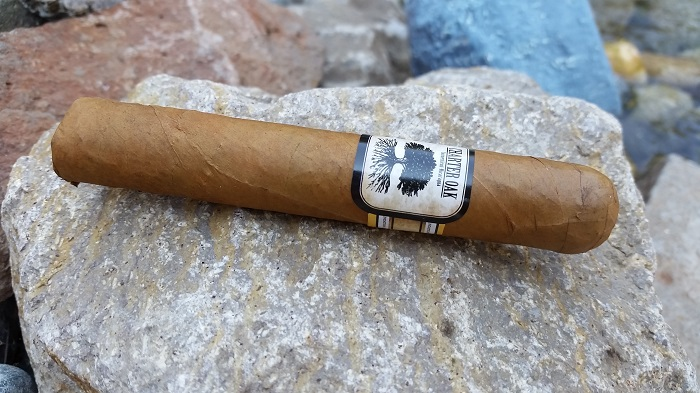 Team Cigar Review: Foundation Charter Oak CT Shade Rothchild