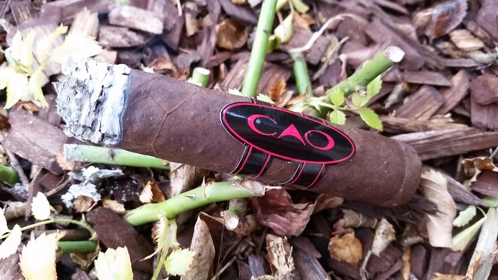 Team Cigar Review: CAO Consigliere Associate