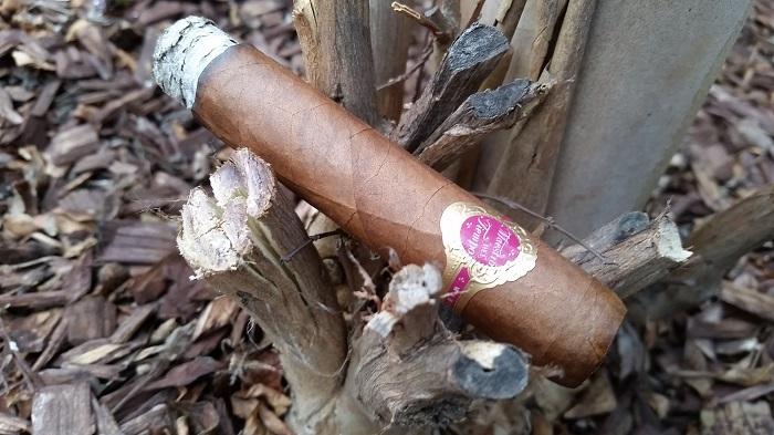 Team Cigar Review: Warped Maestro Del Tiempo 5712