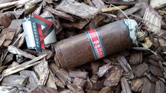Team Cigar Review: Cubariqueño Protocol Probable Cause Robusto