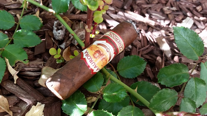 Team Cigar Review: La Aurora 1903 Cameroon Robusto