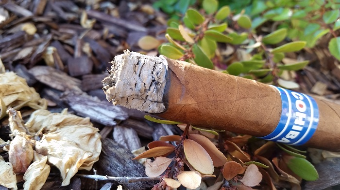 Team Cigar Review: Cohiba Blue Robusto