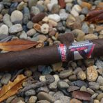 Team Cigar Review: Cubariqueño Protocol Probable Cause Corona Gorda