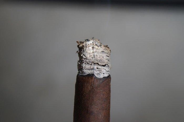 Team Cigar Review: Ventura Archetype Curses Robusto