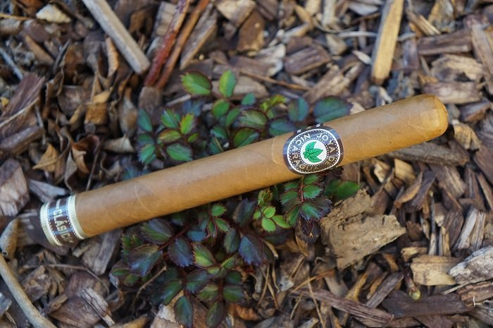 Team Cigar Review: Joya de Nicaragua Clasico Número 6