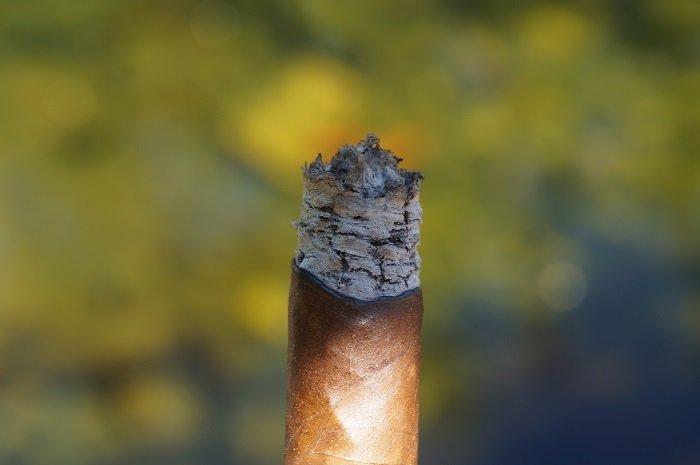 Team Cigar Review: Artesano Del Tobacco Viva La Vida Toro