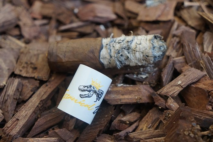 Team Cigar Review: Jas Sum Kral Tyrannical Buc Maduro Magnum 48