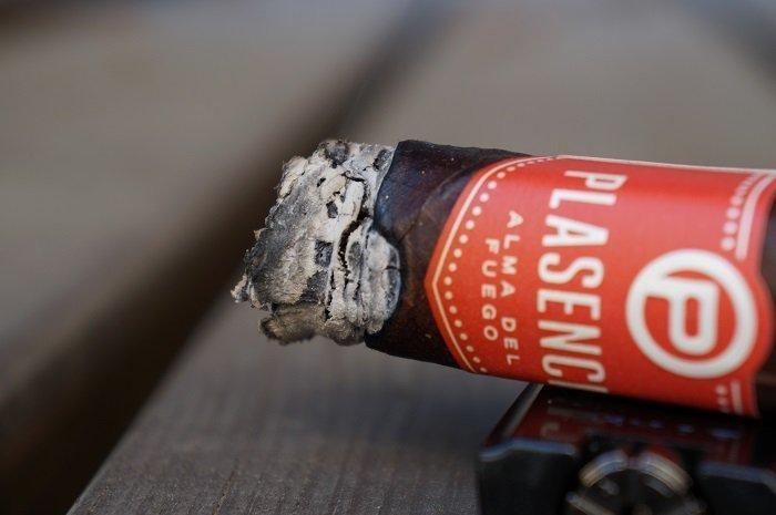 Team Cigar Review: Plasencia Alma del Fuego Concepción