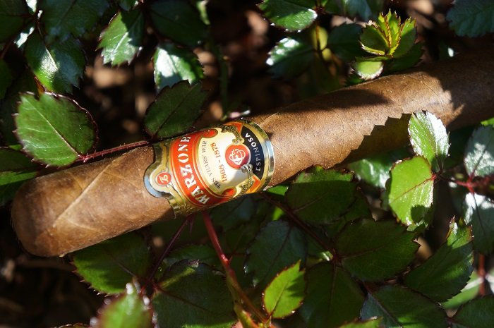 Team Cigar Review: Warzone Robusto