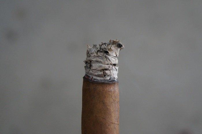 Team Cigar Review: J.C. Newman The American President